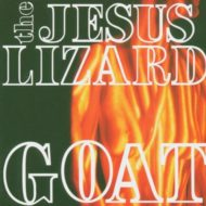 jesus-lizard-goat